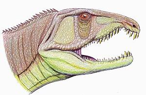 Anisian - Sarmatosuchus