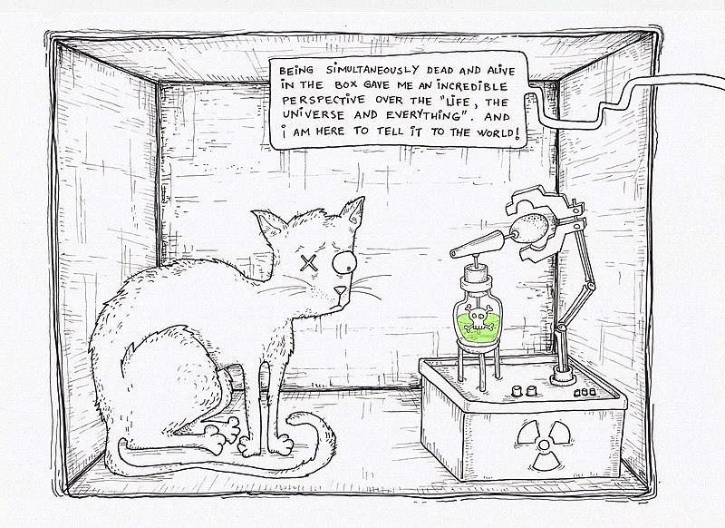 File:Schrodinger cat in box.jpg