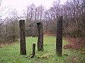 Sculpture, Bogle Crag Wood - geograph.org.uk - 346761.jpg