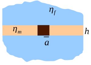 Saffman–Delbrück model - Image: Sd illus wiki