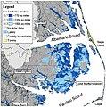 Sea level projections at Alligator River National Wildlife Refuge (5687793984).jpg