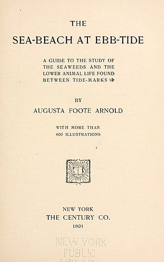 Augusta Foote Arnold - Image: Seabeachatebbtid 00arno 2 0009