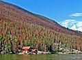 Seclusion, Grand Lake, CO 8-07 (15364206037).jpg