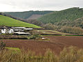 Servis Farm and Pencleave Wood.jpg