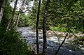 Seymour River from Fisherman's Trail - panoramio.jpg