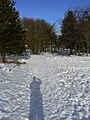Shadow Play (3262775823).jpg