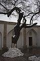 Shah-i-Zinda, Samarkand (8592855734).jpg