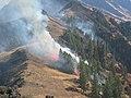 Sheep Creek Fire, Wallowa-Whitman National Forest (26776501586).jpg