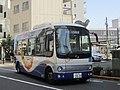 Shinnihon Sightseeing Bus Harukaze Line 8.jpg