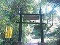 Shivapuri-Nagarjun National Park (49).jpg