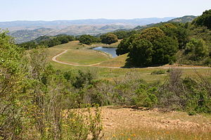 Guadalupe Creek (Santa Clara County) - View overlooking man-made Cherry Springs Lake, near Cherry Springs, the origin of Guadalupe Creek's Cherry Springs Creek tributary