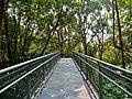 Singapore Southern Ridges Hilltop Walk 07.jpg