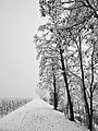 Sinigo Italy the snow in South Tyrol Photo by Giovanni Ussi (28).jpg