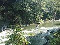 Sistema silvopastoril en cuenca alta del río Coapa, Pijijiapan, Chiapas 30.jpg