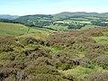 Site of fort and settlement above Stobo - geograph.org.uk - 892210.jpg