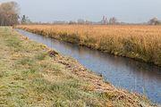 Sloot voor waterbeheersing in het gebied ('It Wikelslân). Locatie, De Alde Feanen in Friesland 03.jpg