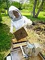 Smiling beekeeper.jpg