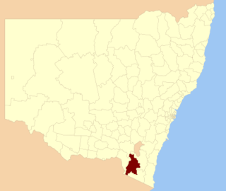 Snowy River Shire Local government area in New South Wales, Australia