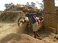 Somewhere in Bihar 06 threshing (32126379105).jpg