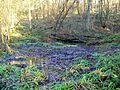 Source des Ermites Montmélian-Vémars, vue depuis le sud.jpg