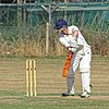 Southwater CC v. Chichester Priory Park CC at Southwater, West Sussex, England 023.jpg