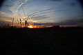 Spring-sunset-mountain-field - West Virginia - ForestWander.jpg