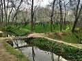 Spring Season Swat kp Pakistan.jpg