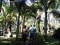 StPierre-Jardin-botanique.jpg