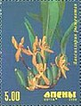 Stamp of Abkhazia - 2000 - Colnect 1004762 - Orchid.jpeg