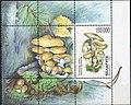 Stamp of Belarus - 1999 - Colnect 85796 - Block Mushrooms.jpeg