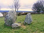 File:Standing Stones at Garmouth - geograph.org.uk - 749495.jpg