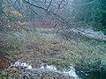 Stauweiher - panoramio.jpg