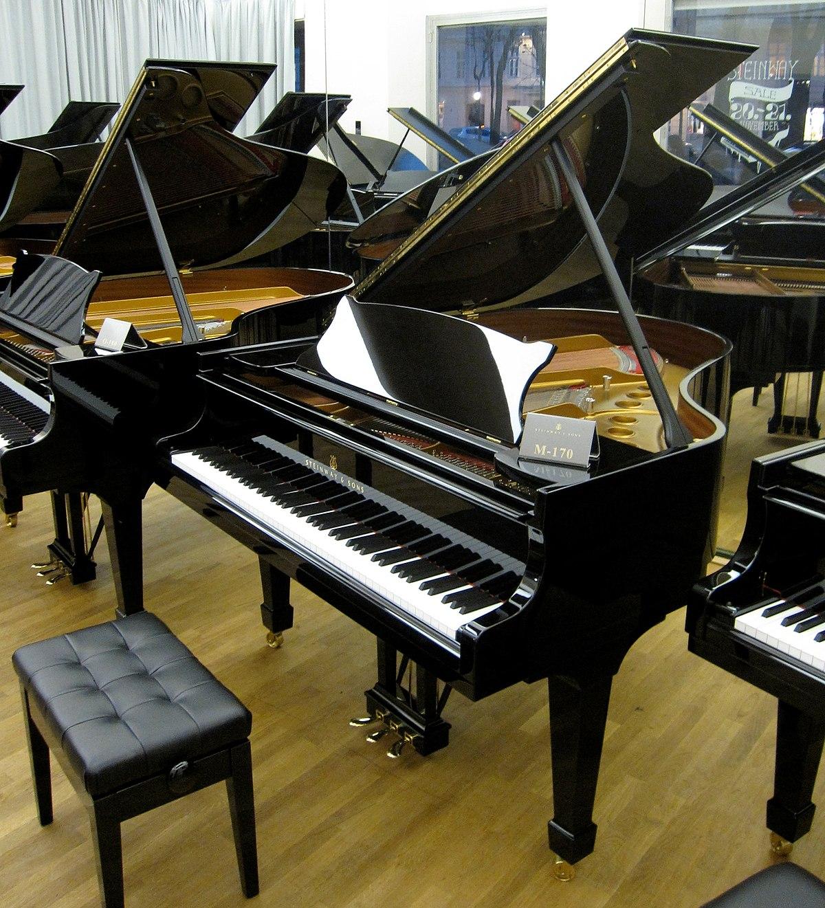 Výsledek obrázku pro klavírista
