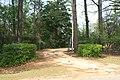 Stephen Beech Cleveland House driveway gate.JPG