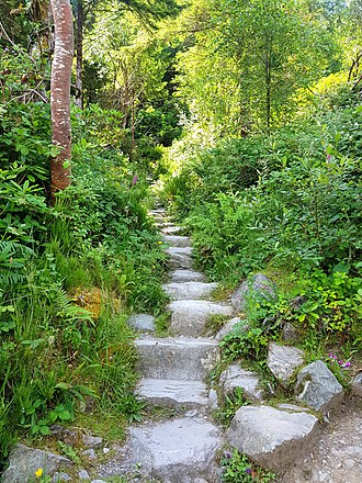 Steps up Cardiac Hill Steps up Cardiac Hill, Torc Waterfall, Killarney, Ireland.jpg