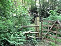Stile into footpath - geograph.org.uk - 454088.jpg
