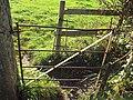 Storeton, Wirral - DSC04134.JPG
