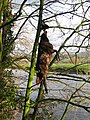 Strange fruit - geograph.org.uk - 352203.jpg