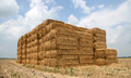 Straw bales in Tippecanoe County, Indiana.png