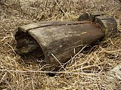 [Pilt: 170px-Stupa-wood.JPG]
