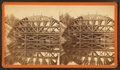 "Sudbury River Conduit, B.W.W., div. 4, sec. 15, Sept. 13, 1876. View of centring of arch ""A"" (when almost completed) from east bank of river and looking down stream, from Robert N. Dennis collection of stereoscopic views.png"