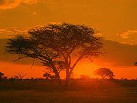 Sunrise Matobo Zimbabwe.jpg