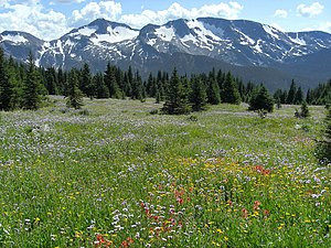 Wells Gray Provincial Park - Table Mountain meadows and Trophy Mountain