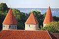 Tallinn 95.jpg