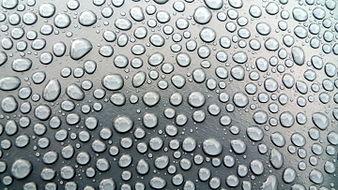 Tension superficial y gotas de agua.JPG