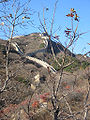 The Great Wall-Badaling-2004g.jpg