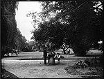 The Lawn, Botanical Gardens, Sydney (4903242813).jpg