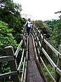The Swiss Bridge, Hawkstone Park - geograph.org.uk - 1501564.jpg