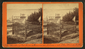 The Woodbury Sanborn Memorial Stone, at The Weirs, N.H, from Robert N. Dennis collection of stereoscopic views.png