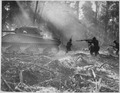 The Yanks mop up on Bougainville. At night the Japanese would infiltrate American lines. At Dawn, the doughboys went... - NARA - 531183.tif